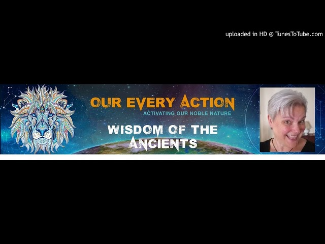 Wisdom of the Ancients Interview with Beth Herndobler