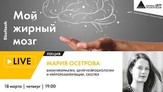 """Лекция """"Мой жирный мозг"""" в рамках проекта """"Сколтех в Архэ"""""""