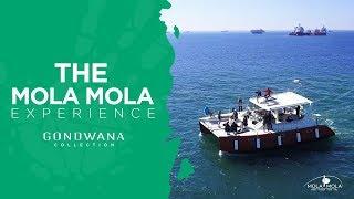 A Namibian Moment - Mola Mola Safaris Namibia