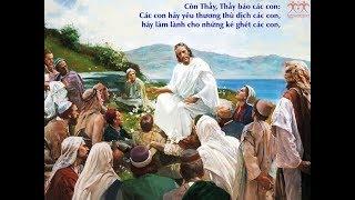 CHÚA NHẬT VII THƯỜNG NIÊN NĂM C - CA HIỆP LỄ (LUCIA)