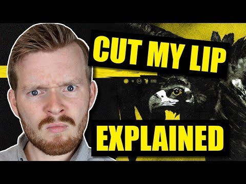 """What does """"Cut My Lip"""" by Twenty One Pilots mean?   Trench Explained"""