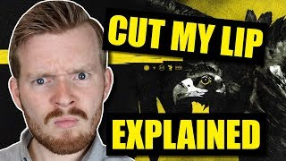 "What does ""Cut My Lip"" by Twenty One Pilots mean? 