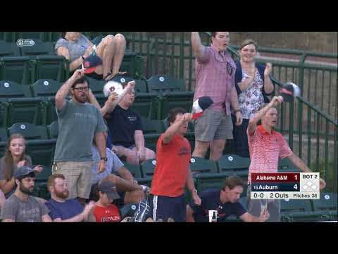 Auburn Baseball vs Alabama A&M Highlights