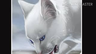 Коты - Воители:Знак Водолея |New Video!|