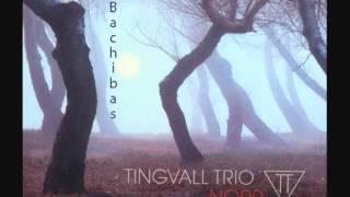 Bachibas - Tingvall Trio