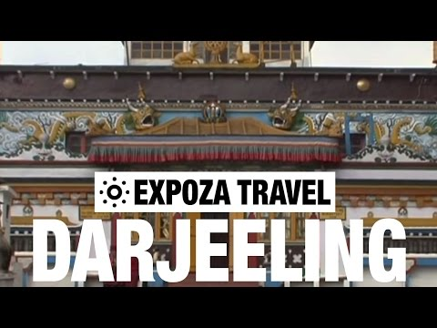 Darjeeling Himalayan Toy Train Vacation Travel Video Guide
