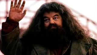 Хагрид из«Гарри Поттера» оказался винвалидной коляске