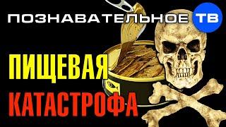 Виктория Бутенко Пищевая катастрофа