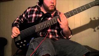 Rise Against - Zero Visibility (Bass Cover)