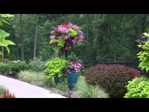 Spectacular Container Garden