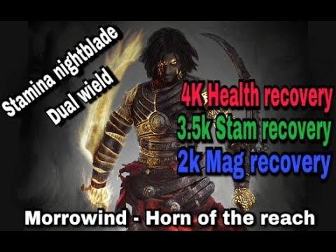 Stamina Nightblade Build Pvp Morrowind