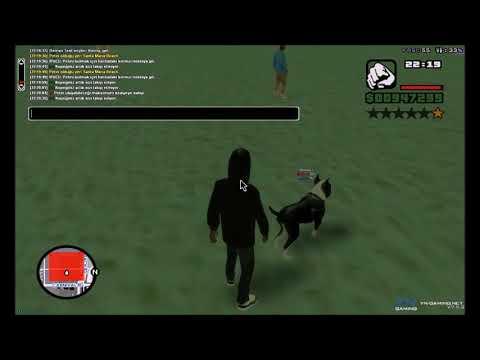 Yn-Gaming - Pet Sistemi