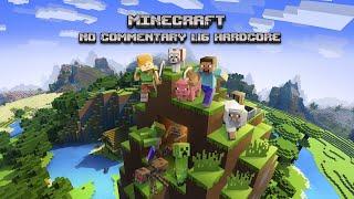 Minecraft 1.16 Hardcore (No commentary) #1