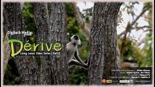 Dérive - The journey | The Living Lense Series Episode - 2 | Jithin Vijayan