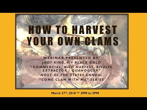 Webinar: How to Harvest Your Own Clams in Rhode Island