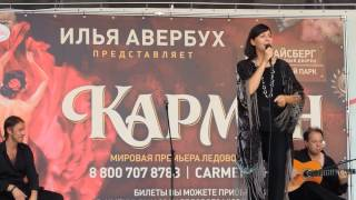 Olga Domenech. Ледовое шоу