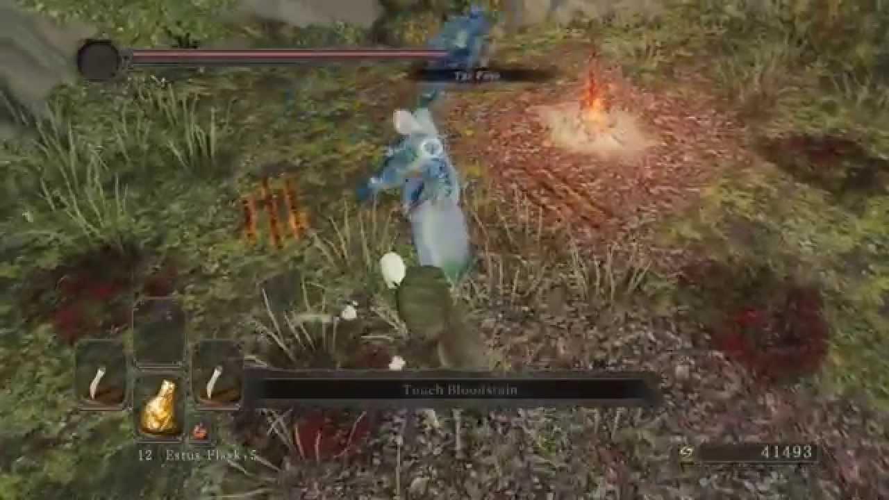 Download Dark Souls 2 - Legolas Cosplay