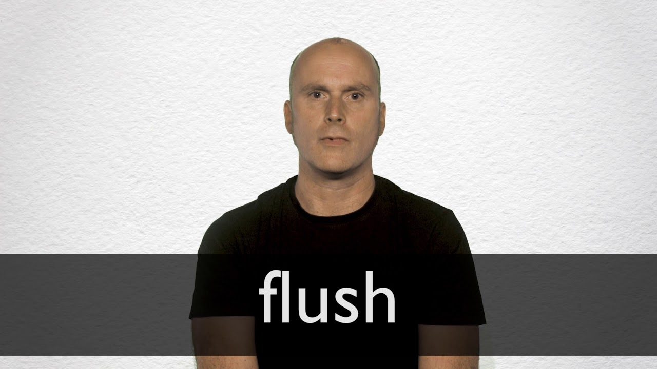 Flush definition and meaning | Collins English Dictionary