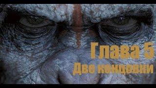Планета обезьян: последний рубеж Глава 5 (две концовки) (60FPS)