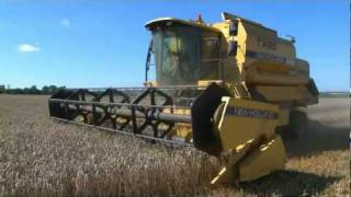 HARVESTING WHEAT -  from ' bee bright - OUT AND ABOUT ON THE FARM - INCREDIBLE CROPS!'
