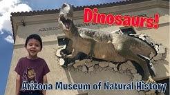DINOSAURS IN ARIZONA?! | Arizona Museum of Natural History | Mesa, Az