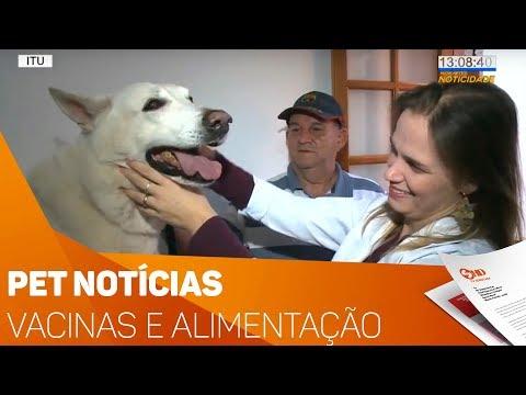 Pet Notícias: Vacinas e Alimentação - TV SOROCABA/SBT