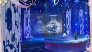 周杰倫2008年春節晚會「青花瓷」