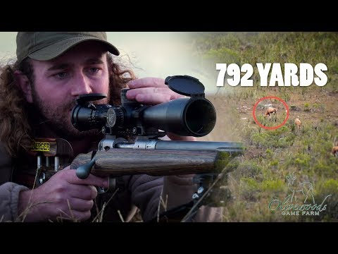 792 Yard Shot: Blesbok Drops Where It Stands! | Olivewoods Game Farm, Part 5