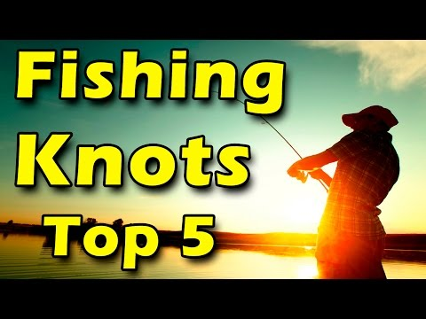 Top 5 Fishing Knots