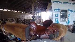 GoPro Horse Riding on a Rainy Day