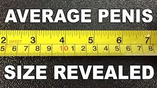 Download Average Penis Size Revealed - The Know