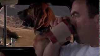 Jeff Beal - Paradise (Jesse