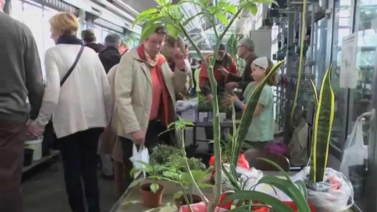 Garten Osnabrück pflanzentauschmarkt im botanischen garten der universität osnabrück