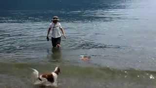 愛犬と犬友達と知内浜オートキャンプ場でBBQをして来ました。 さてカナ...