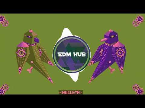 Nucleya - Going To America feat. Anirudh Ravichander & Anthony Daasan || EDM HUB Mp3