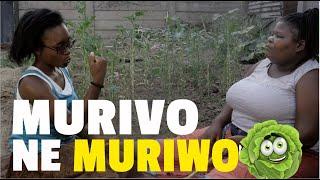 Murivo neMuriwo | BUSTOP TV