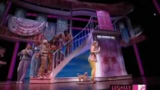 Legally Blonde The Musical Omigod You Guys