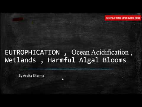 Eutrophication , Ocean Acidification , Wetlands , Harmful Algal Blooms : Class 6 By Arpita Sharma