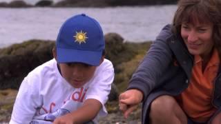 OC Adventures with Zaya! Episode Seven: OC Wildlife and Beach Tour, Inc.