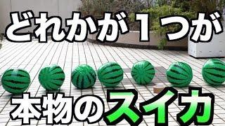 ビーチボールが1個だけ本物のスイカドッキリ thumbnail