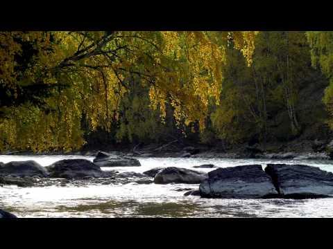 Река в 4к природа, очень красивое видео, релакс.