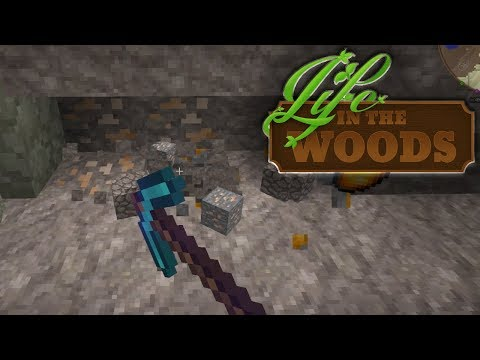 LIFE IN THE WOODS ⛺️ 142 • STRIPMINING in fremden Gefilden