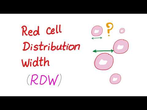 red-cell-distribution-width-(rdw);-what-does-this-lab-test-really-mean?