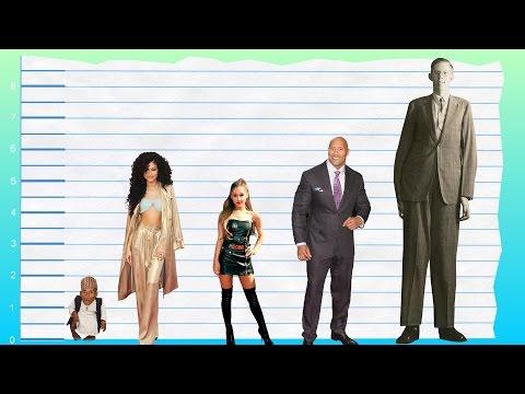 How Tall Is Zendaya? - Height Comparison!