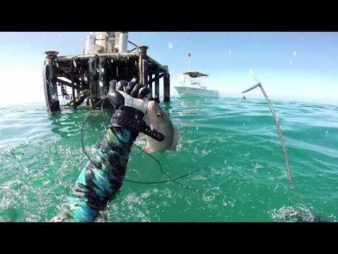Viking 82 Convertible Sportfish   MUSTANG SALLY from YouTube · High Definition · Duration:  51 seconds  · 8.000+ views · uploaded on 26.02.2015 · uploaded by ZipZapPower