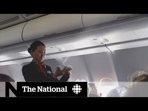 Pesticides on the plane | CBC Go Public