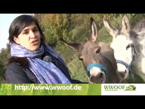 "WWOOF - ""World-Wide Opportunities on Organic Farms"""