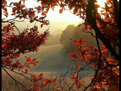 WILLIAM ALWYN_Autumn Legend for English horn & orchestra.wmv