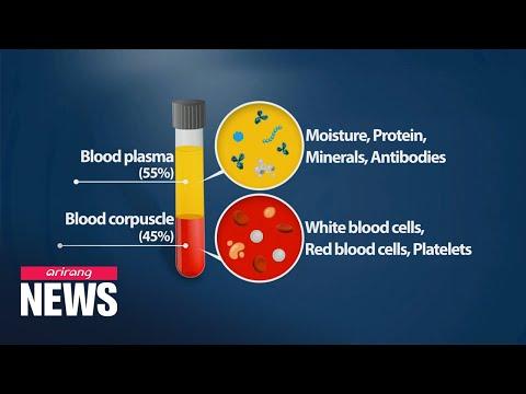 S. Korean researchers prove effectiveness of blood plasma treatment on COVID-19 patients