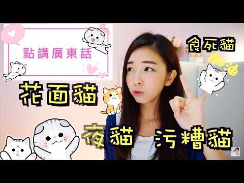 Học nói tiếng Quảng - Gian lận (nói tiếng quảng như thế nào)